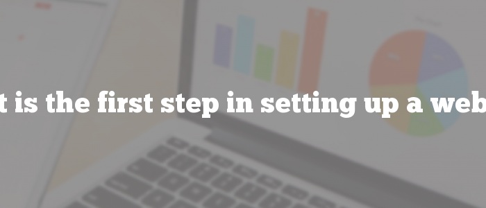 What is the first step in setting up a website?